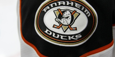 Anaheim Ducks shoulder patch on a player's jersey