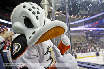 Wildwing from the Anaheim Ducks.