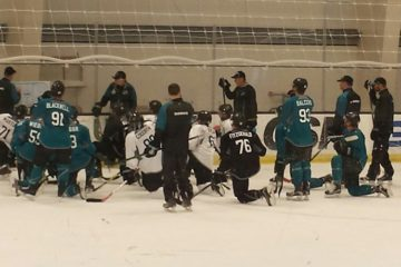 Prospects at Sharks Ice. July 8, 2016.
