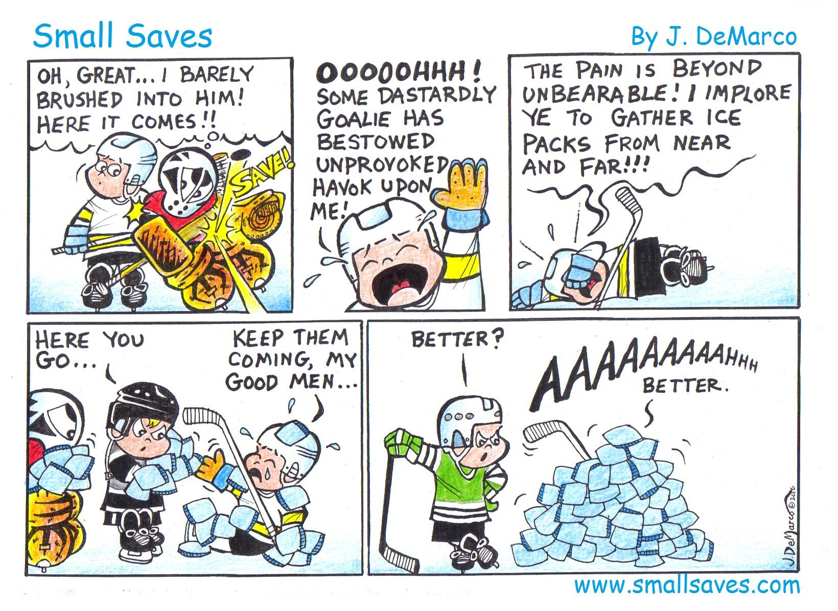 smallsaves_icebags